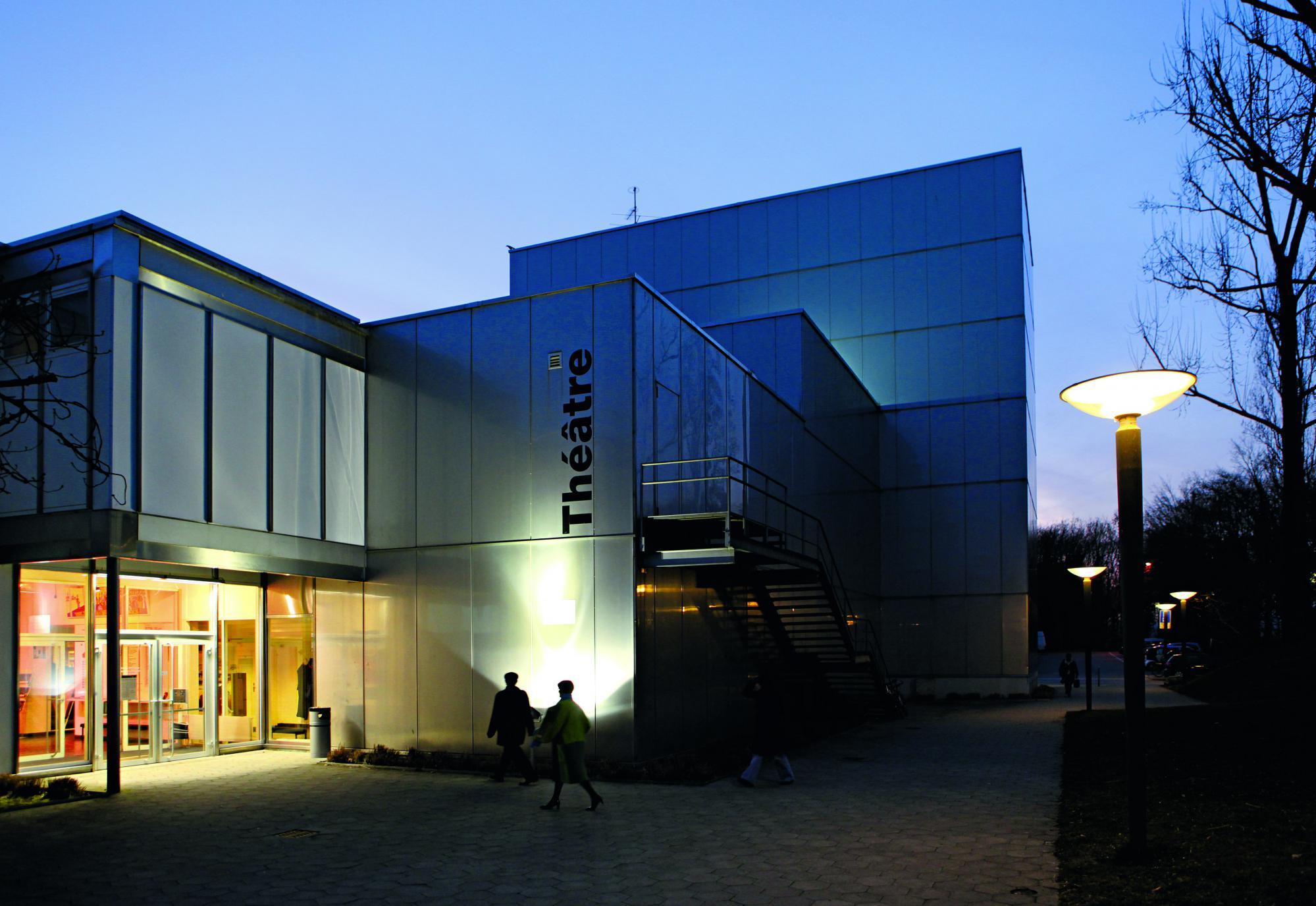 theatre vidy